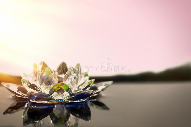Стеклянный цветок лотоса лежит в воде Лучи солнца sh стоковая фотография rf