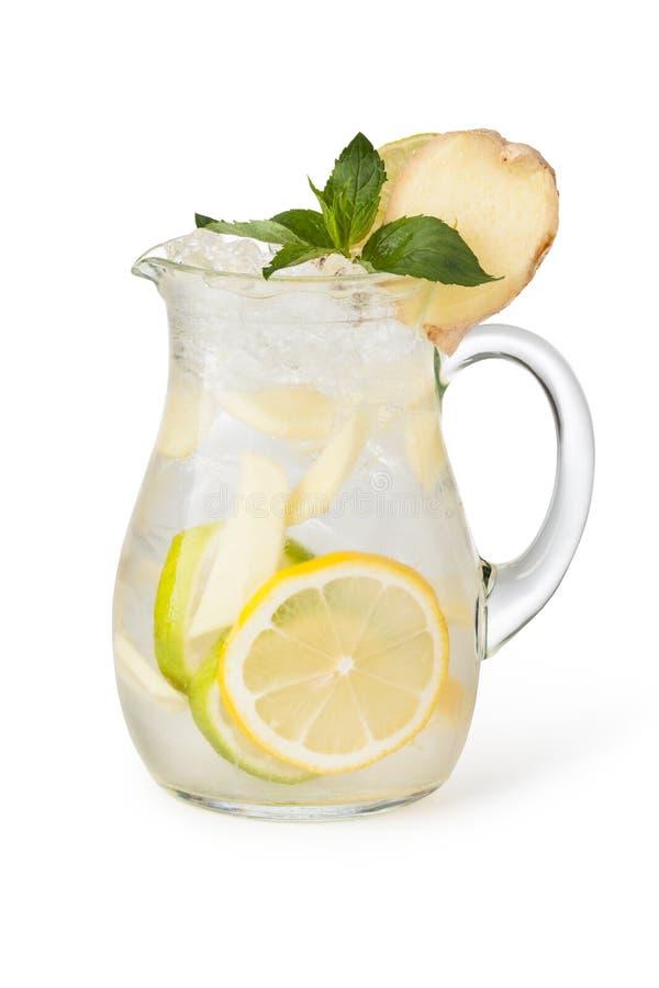 Стекла пить плодоовощ с кубами льда стоковая фотография rf