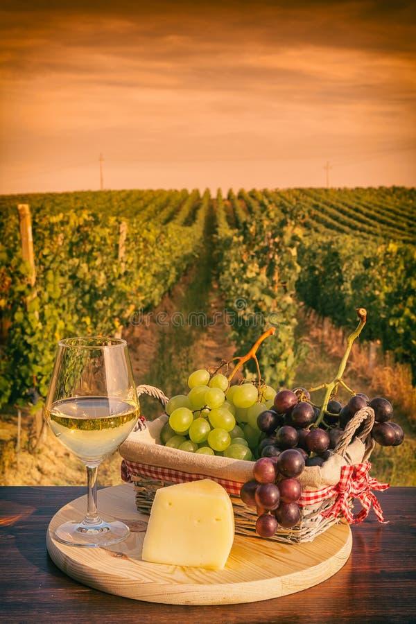 Стекло белого вина перед виноградником на заходе солнца стоковые фотографии rf