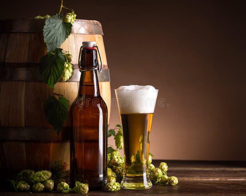 Стекло и бутылка пива стоковые фотографии rf