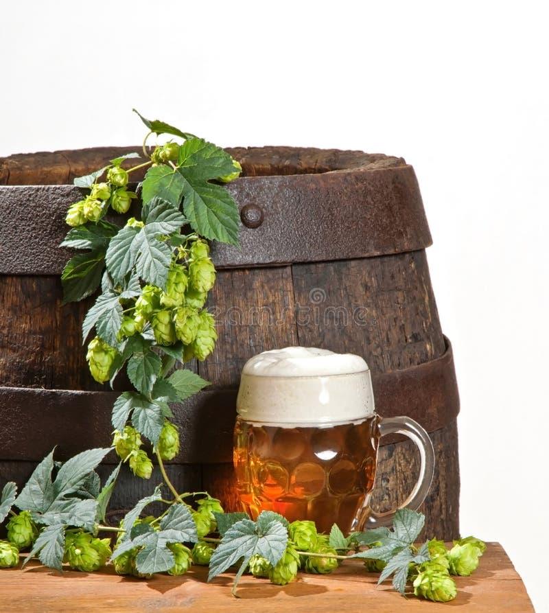 Download Стекло и хмели пива стоковое фото. изображение насчитывающей винодела - 37927866