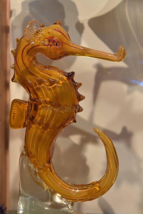 Стекло морского конька стоковые изображения rf