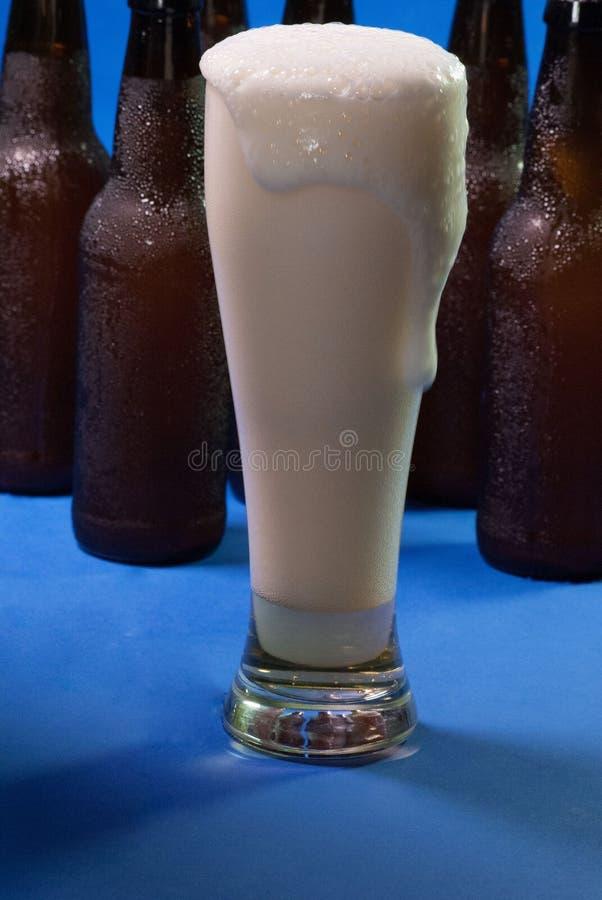 стекло пива высокорослое стоковое изображение rf