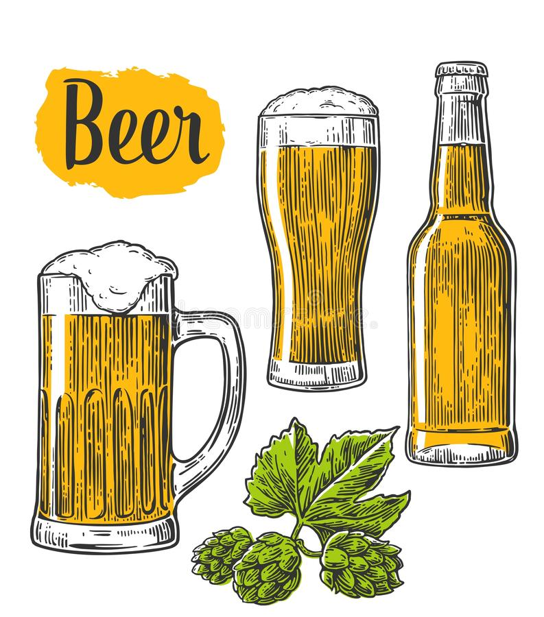 Стекло пива, кружка, бутылка, хмель Vector иллюстрация выгравированная годом сбора винограда изолированная на белой предпосылке иллюстрация вектора