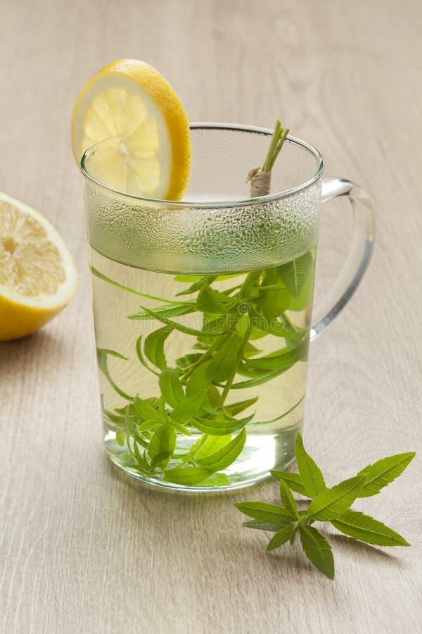 Стекло с чаем вербены лимона стоковые изображения rf