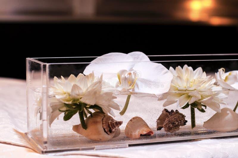 Стеклянная ваза с плавать и раковинами лилий воды стоковое изображение rf
