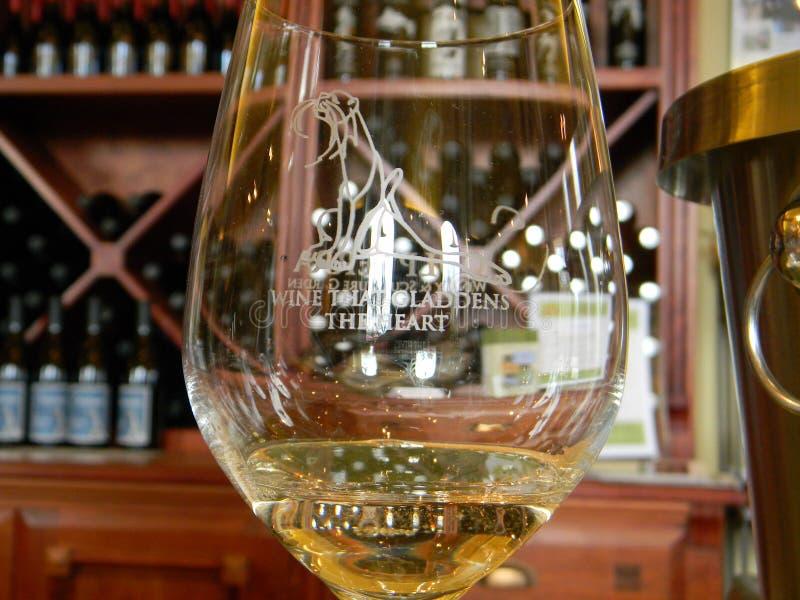 стеклянное белое вино стоковая фотография rf