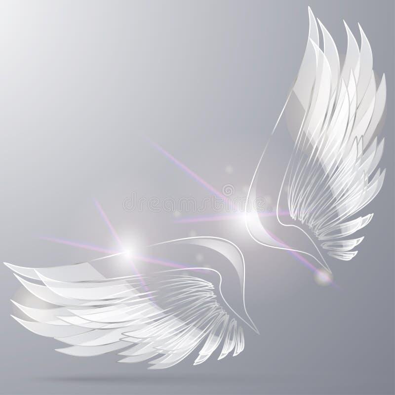 Стеклянные крыла стоковое фото rf