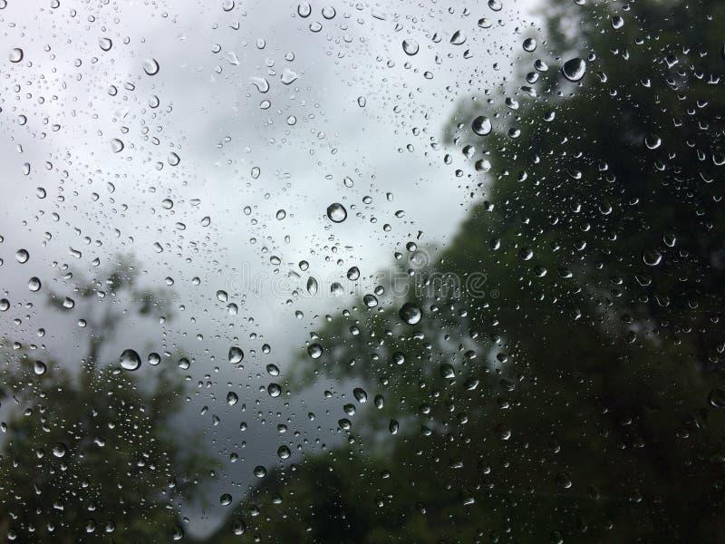 стеклянные raindrops стоковые изображения rf