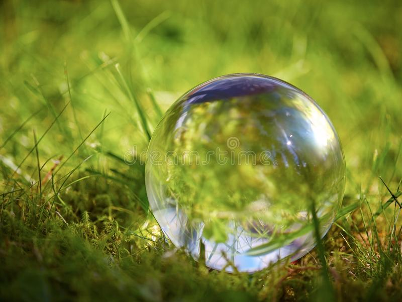 Стеклянный шарик на траве в лете стоковое фото