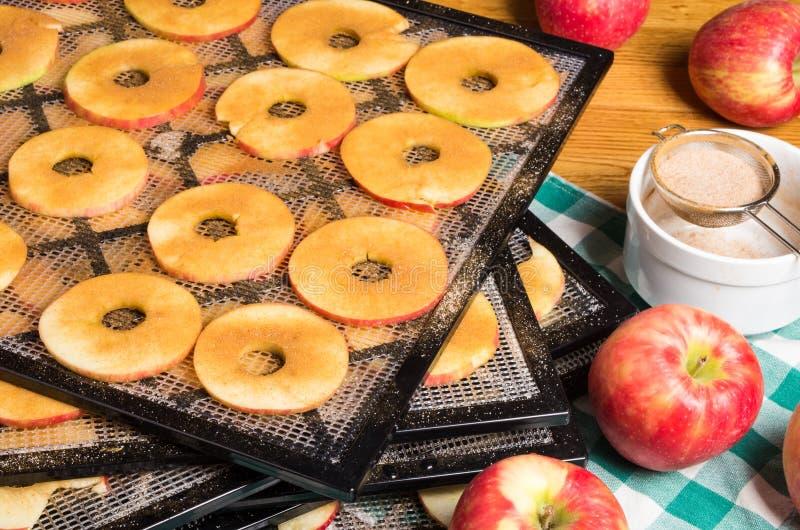 Стеллаж для просушки ломтиков яблока стоковое фото