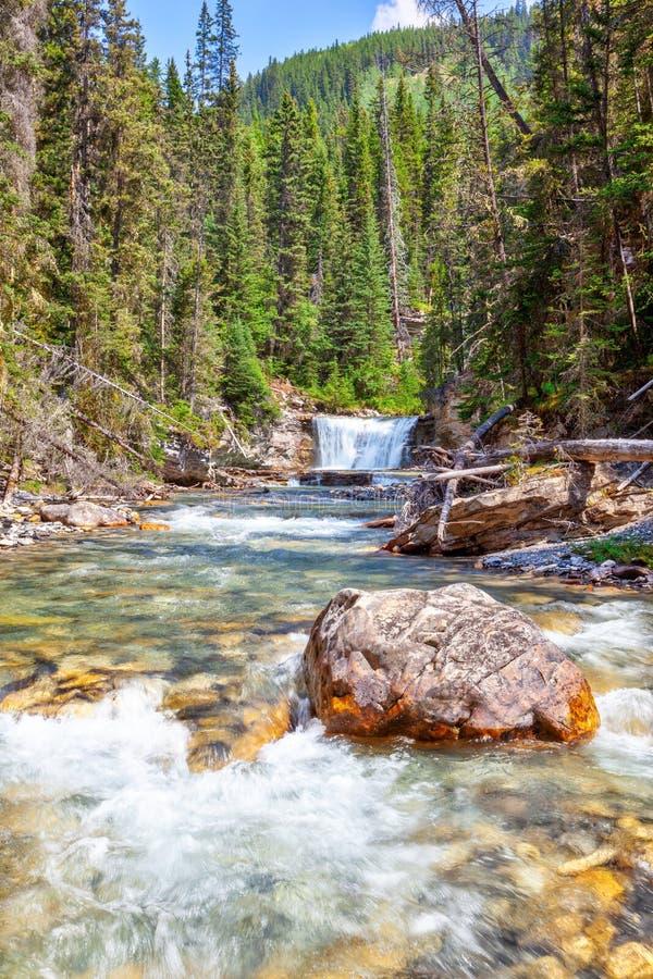 Стелла падает на каньон Johnston в национальном парке Banff стоковая фотография