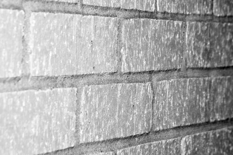 Стена бетонной плиты стоковые изображения rf