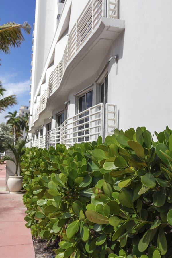 Стена белого здания классического стиля в Miami Beach стоковая фотография rf