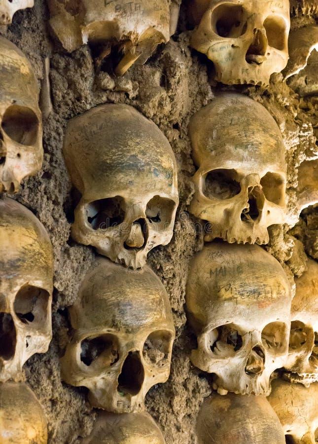 Стена вполне черепов и косточек стоковая фотография rf