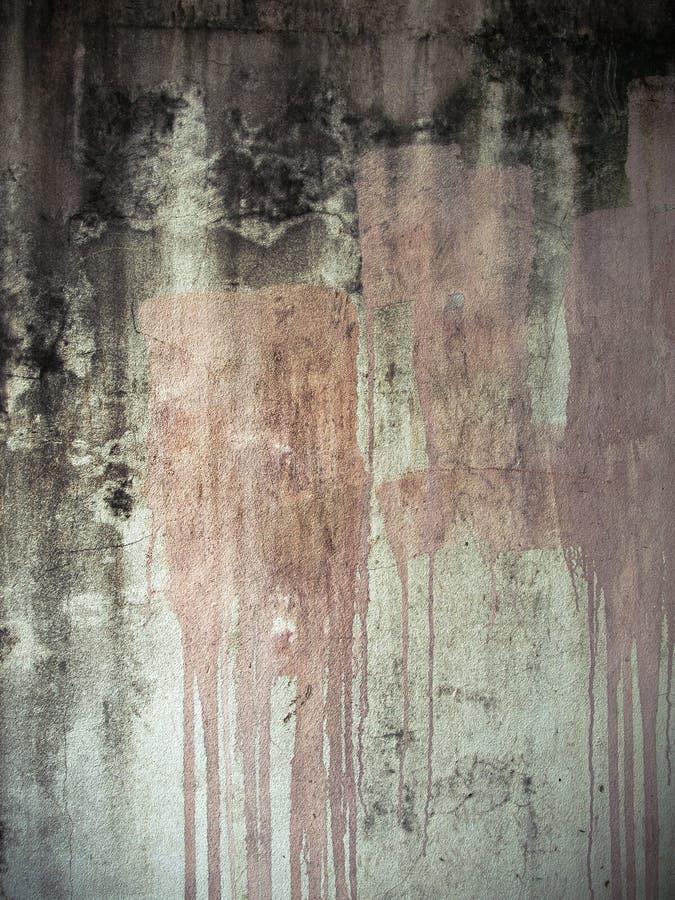стена гипсового цемента стоковые фото