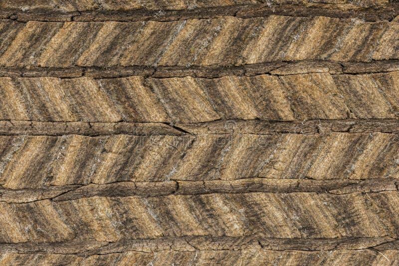 Стена дернов травы стоковое фото rf