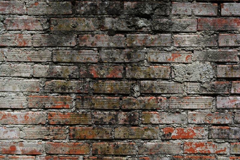 стена кирпича старая стоковое изображение