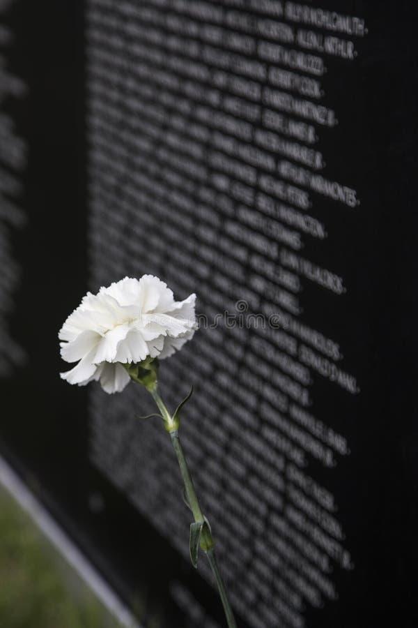 Стена мемориала ветеранов Вьетнама стоковые изображения rf