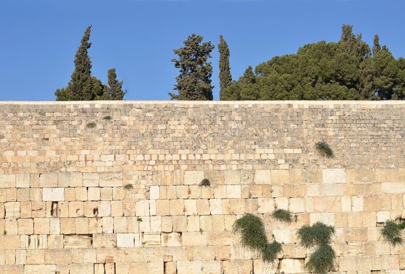 Стена от белого конца-вверх кирпича стоковые фотографии rf
