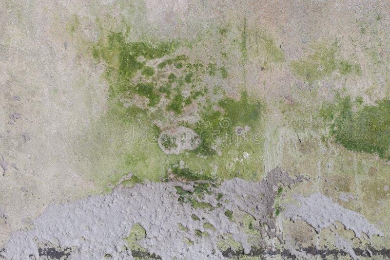 стена предпосылки grungy стоковые изображения rf