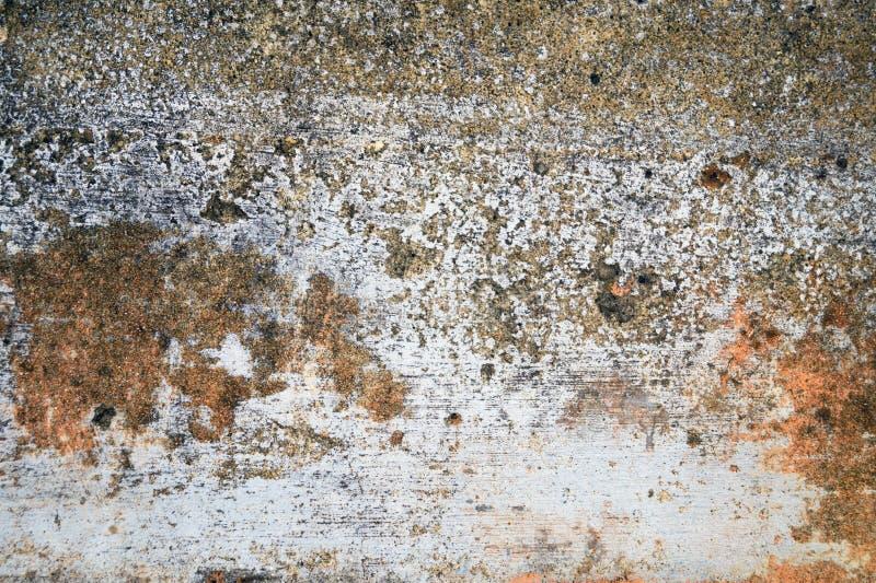 Стена со старыми затрапезными гипсолитом, краской и прессформой стоковая фотография rf