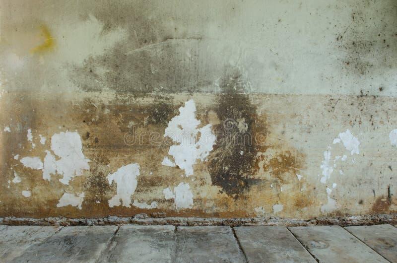 Стена цемента и пакостное стоковые изображения rf