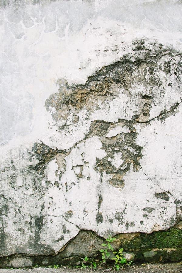 стена цемента старая стоковое изображение rf