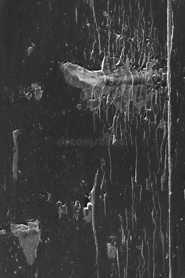Стена цемента ультракрасного grunge серая с отказом в ем стоковые изображения rf