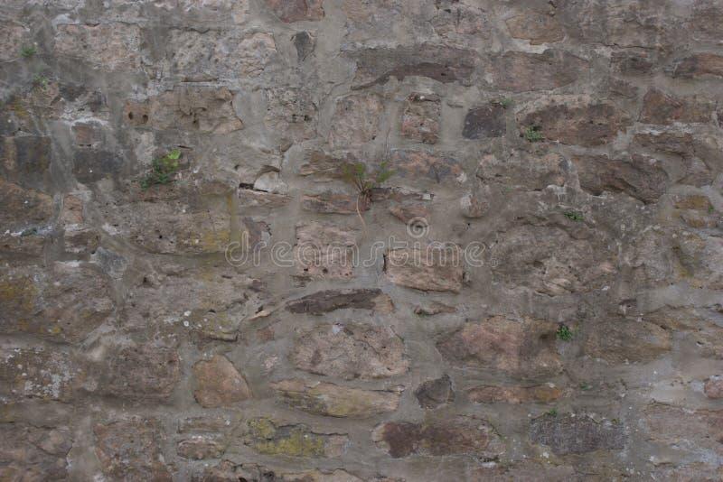 Стена Fieldstone с различными покрашенными ломтями песчаника стоковое изображение rf
