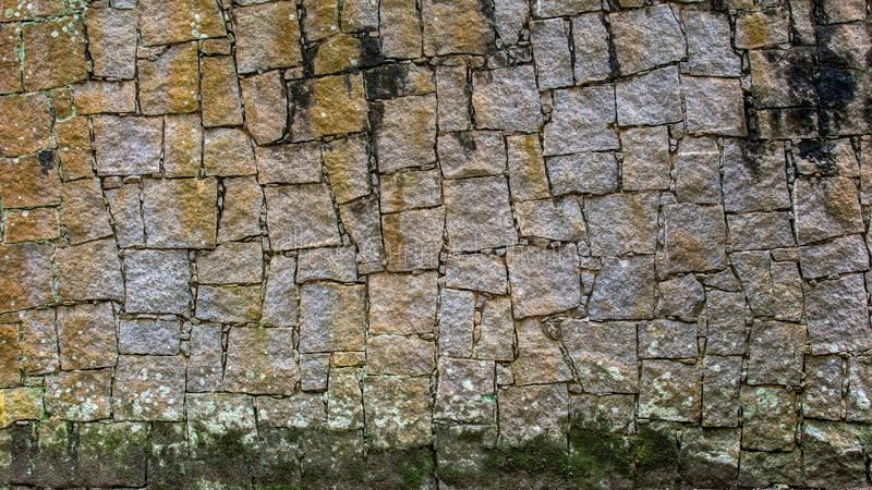 Стена Grunge каменная с скачками картиной и мхом стоковые изображения