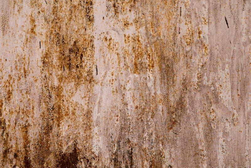 Download Стена Grunge стоковое фото. изображение насчитывающей нутряно - 33729402