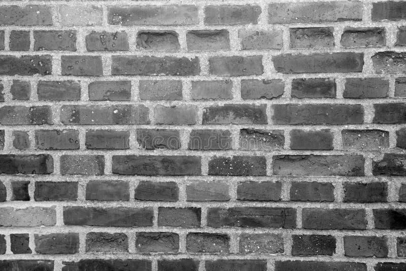 стена rastre изображения кирпича предпосылки стоковая фотография