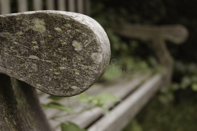 стенд сиротливый стоковая фотография rf