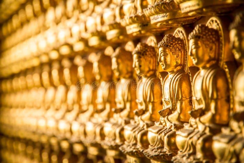 Стены выровняны с малым Буддой стоковая фотография