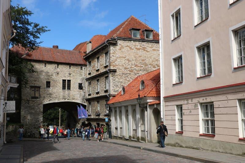 Стены города Таллина, Эстонии стоковые фотографии rf