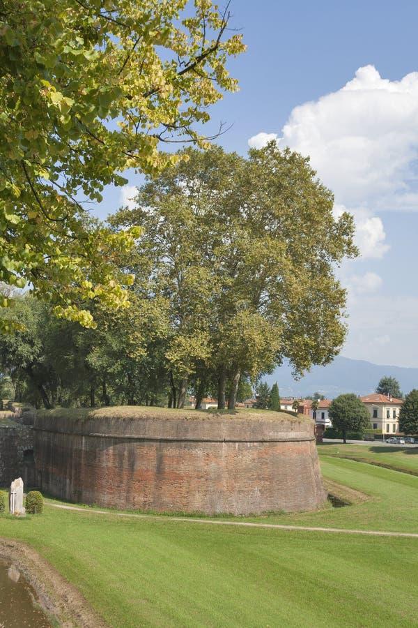 Стены города Лукки средневековые, Италия стоковое фото rf