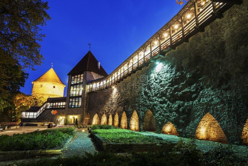 Стены города Таллина стоковые изображения rf
