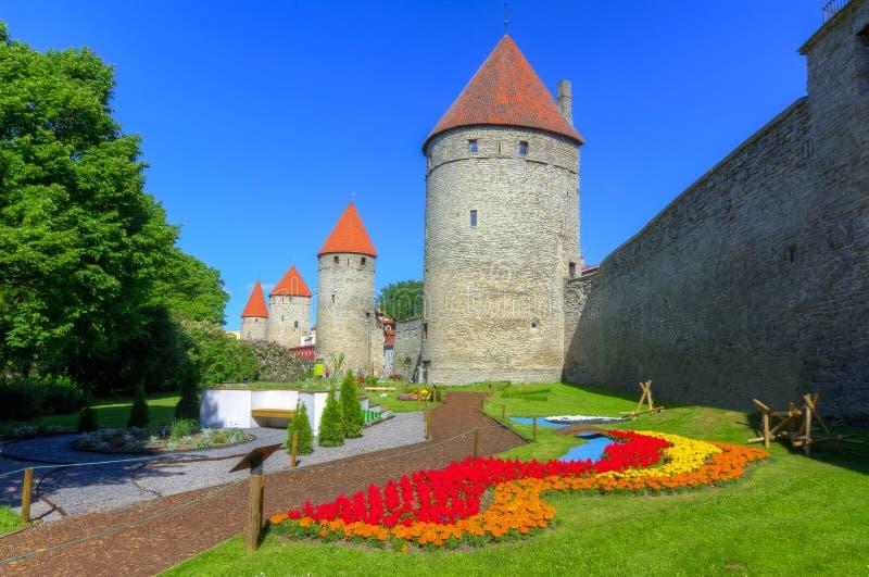 Стены и башни старого Таллина, Эстонии стоковые фотографии rf
