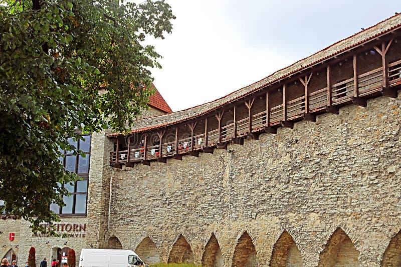 Стены крепости Таллина, Эстонии Стены и много стробов все еще в большинстве extant сегодня стоковое фото rf