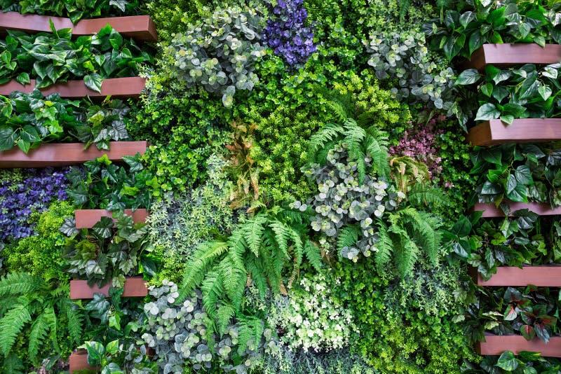 Стены украшенные с искусственными деревьями стоковая фотография