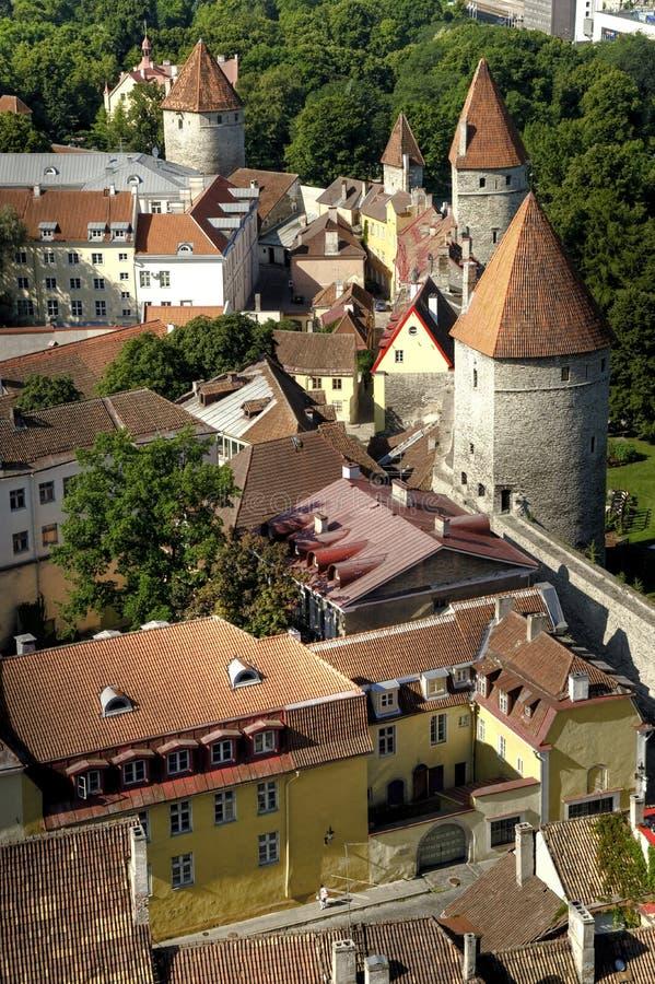 стены эстонии tallinn города стоковая фотография