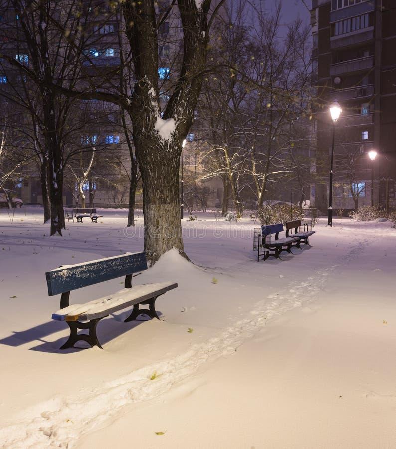 Стенд ландшафта ночи зимы под деревьями и сияющими снежинками уличных светов падая стоковое изображение rf