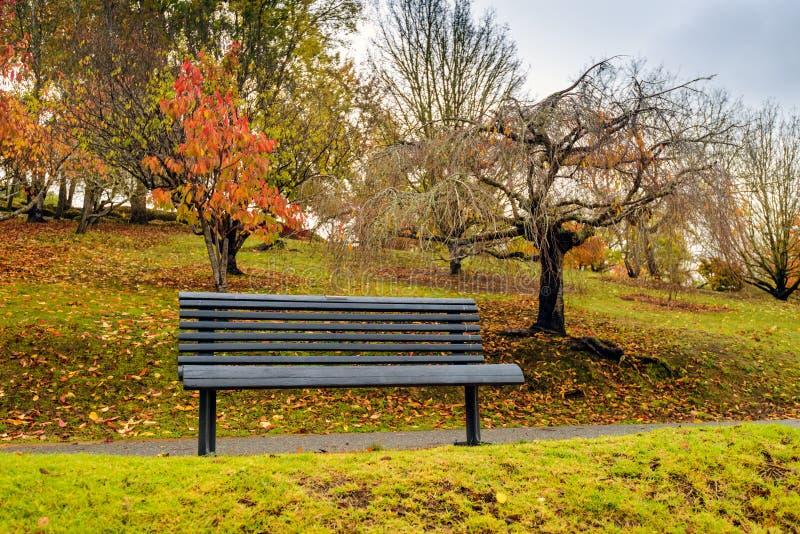 Стенд в парке осени под дождем стоковые фото