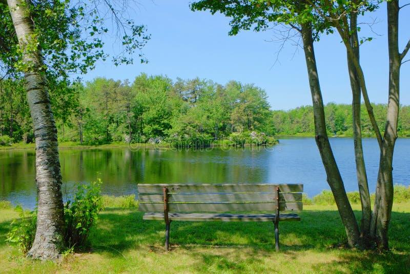 Стенд с видом на озеро стоковое изображение rf