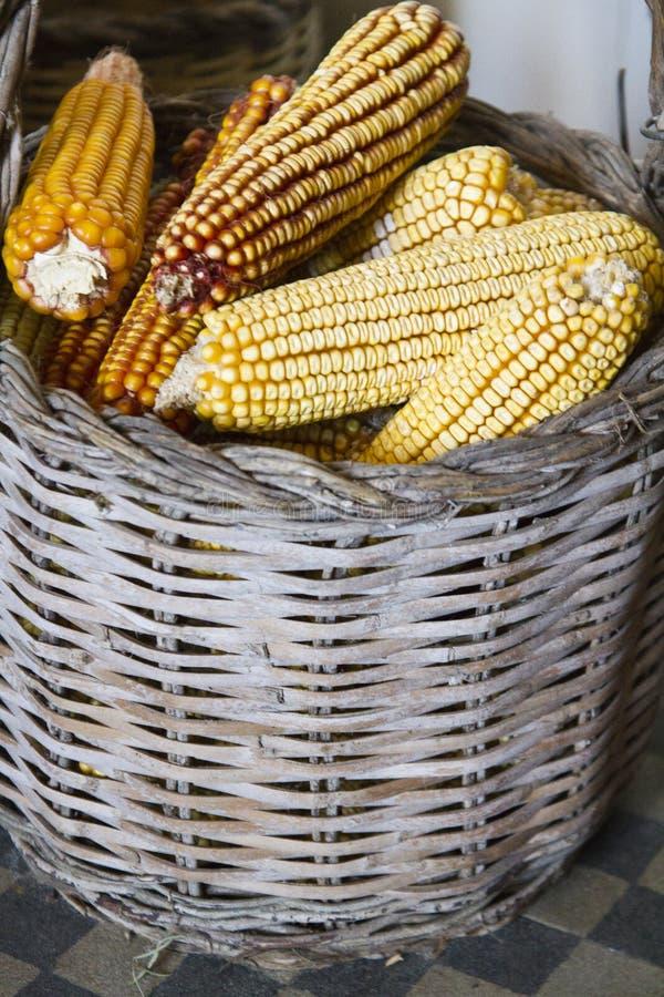 стержни кукурузного початка на корзине стоковые изображения rf