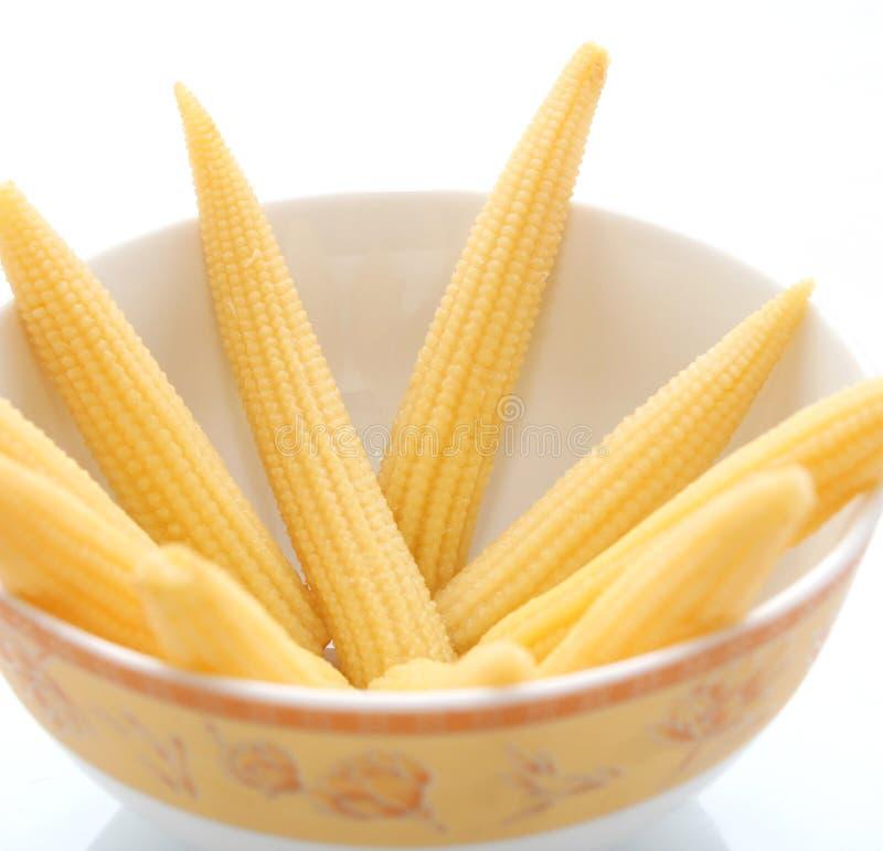 Стержни кукурузного початка стоковое изображение