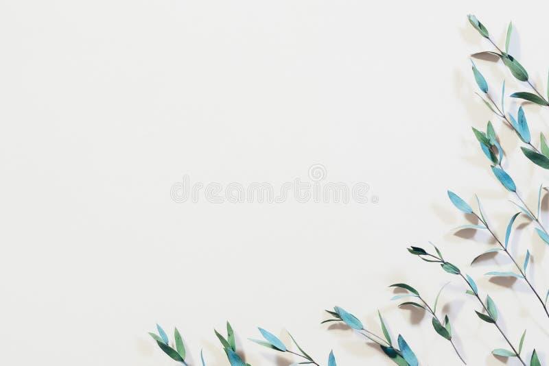 Стержни минимализма дизайна картины завода свежие молодые стоковое изображение