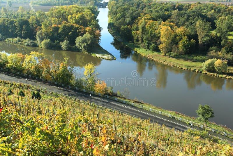 Стечение Elbe и Vltava стоковое изображение rf