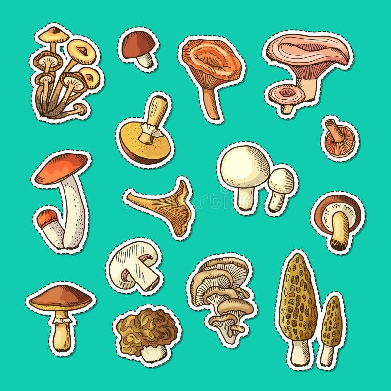 Стикеры грибов вектора нарисованные рукой установили иллюстрацию бесплатная иллюстрация